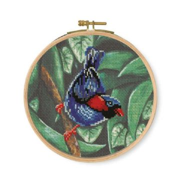 DMC Printed Embroidery Kit- Parokeet  BK1790
